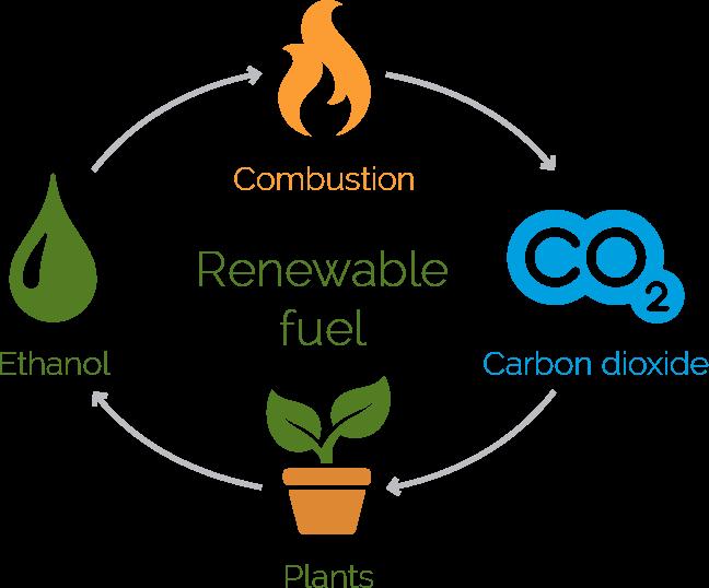 Co2 In Ethanol